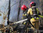 Pożar w Stramnicy. Spłonął gołębnik